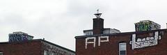 Fugue AP ? (walknboston) Tags: rooftop ma graffiti tag ap roller spraypaint allston fugue