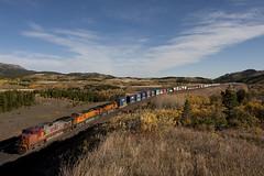 Battle Bonnet (Trevor Sokolan) Tags: railroad usa mountain santafe train us montana diesel rail railway american locomotive ge bison bnsf marias intermodal dash9 c449w