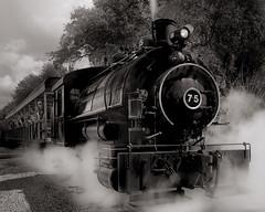 Flagg Coal Co. #75 (josesuro) Tags: bw film florida trains 4x5 2009 largeformat acros parrish sarasotabradenton jaspcphotography josesuro