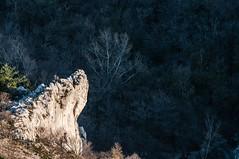 Peak (TheSpaceWalker) Tags: wild italy nature photography photo nikon italia sigma peak pic apo 28 karst 70200mm d300 naturalpark friuliveneziagiulia valrosandra parconaturale riservanaturale thespacewalker