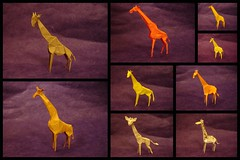 giraffes (shuki.kato) Tags: john paper mammal origami peter giraffe fold engel gen komatsu montroll kato satoshi andrey hideo hagiwara shuki ermakov kamiya