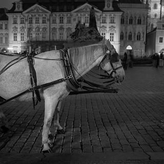 Praha #40