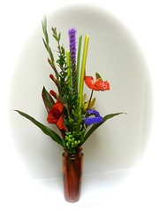 """#22V Tropical Flare $45 & Up • <a style=""""font-size:0.8em;"""" href=""""http://www.flickr.com/photos/39372067@N08/12227809165/"""" target=""""_blank"""">View on Flickr</a>"""