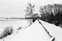 dubna, february 20014 (maFATALE by manutara) Tags: blackandwhite sun snow river outside frost russia sunny 400 outback asa ilfordxp2 ilford volga 320 nikonf4 dubna nikkor5018d nikonsb22 nikon8518afd dubnamoscow