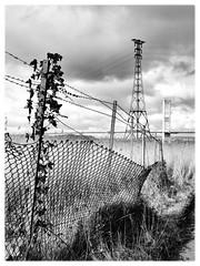 Aust (Maggie's Camera) Tags: bridge blackandwhite severn aust austferry {vision}:{sky}=0751 {vision}:{outdoor}=0878