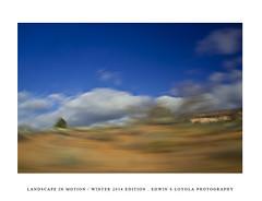 LANDSCAPEINMOTION2015-008 (Edwin Loyola) Tags: winter abstract nature landscape seasons icm intentionalcameramovement landscapeinmotion edwinsloyola edwinloyola edwinsloyolaphotography