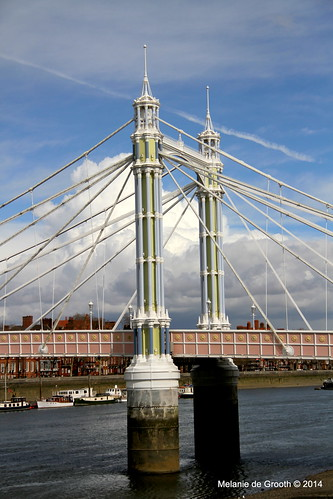 Albert Bridge 2