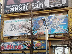 """Akiba March 9 • <a style=""""font-size:0.8em;"""" href=""""https://www.flickr.com/photos/66379360@N02/13556111545/"""" target=""""_blank"""">View on Flickr</a>"""