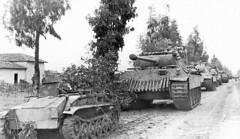 Behind this Borgward B IV, a column of Panthers including an Ausf. A (D2). Armour likely belongs to 1./Pzr.Rgt.4. Nettuno, Italy, February 1944.
