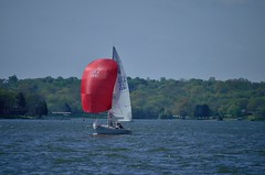 2014 O.L. Shultz Alive Hospice Cruiser Regatta - J/22 (seantheriot) Tags: old lake hospice regatta alive hickory j22