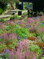Le jardin des fleurs, Vannes (Rockman of Zymurgy) Tags: flowers france fleurs garden brittany jardin breizh morbihan vannes breton 2013