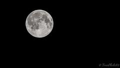 Fullmoon (ToxicPhoto89) Tags: moon night canon eos nacht fullmoon tamron lunar vc usd vollmond 70300 700d t5i