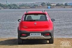 Fiat-Avventura-Urban-Cross-Rear (3)