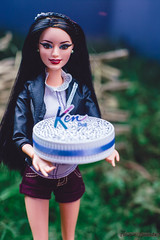 Ken's Picnic Birthday (Flávia_Duarte) Tags: barbie ken raquelle styleluxo lifeinthedreamhouse fashionista birthday birthdayparty picnic party cake garden doll dolls mattel