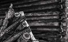 Firewood (geirrisberg) Tags: europa geografistedsnavn gjøvik nonaturfotover07052009naturfokus nordeuropa norge oppland østlandet