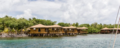 (Maryse C-N) Tags: voyage travel honduras roatan