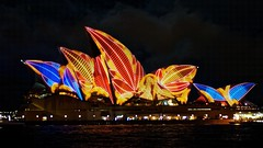Sydney Opera House during Vivid Sydney (Andy Burton Oz) Tags: color colour sydney australia circularquay festivaloflight nsw newsouthwales therocks sydneyharbour sydneyoperahouse sydneycove 2013 circularquaywest afnikkor50mmf18d andyburton warrane vividsydney nikond7000 flickrexport403 aperture343