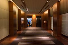 elevator (Homemade) Tags: japan tokyo lift elevator lobby foyer marunouchihotel sonydscrx100