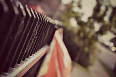 Port Dover Fence (Paul B0udreau) Tags: ontario canada fence nikon dof bokeh canadianflag ribbet portdover hff nikkor70300mm d5100 fencefriday paulboudreauphotography nikond5100