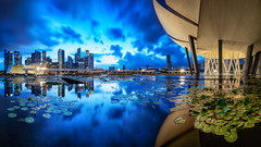 Cerulean Cities (Scintt) Tags: light sky urban panorama motion blur reflection art water skyline museum architecture modern night clouds marina buildings way mirror bay movement singapore skyscrapers pano towers structures science lillies cbd sands financial stitched offices mbs asm shenton scintillation artscience scintt