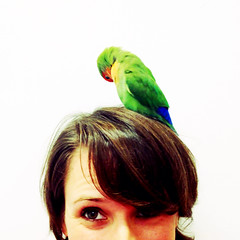 Bird Brain (nora.starwaters) Tags: selfportrait bird head parrot lovebird birdbrain