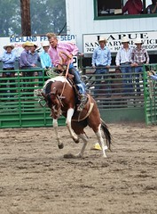 "Baker County Tourism – basecampbaker.com 10174 (Base Camp Baker) Tags: ranch heritage history cowboys museum oregon festivals fair bulls historic rodeo agriculture 4h broncs basecampbaker ""bakercity"" ""bakercounty"" ""easternoregon"" ""bakercountyfair"" ""bakercountytourism"" ""basecampbaker"" ""bullriding"" ""broncriding"""