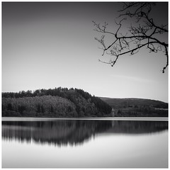 Lake Vyrnwy Autumn Reflections (MDG534621) Tags: bw water wales landscape nikon cymru vyrnwy d90 nd10