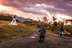 Wedding Photography Japan (Guimin) Tags: wedding japan zeiss sunrise photography fuji sony 24mm shizuoka sonnar nex 5n 24f18 nex5n sel24f18z sel24f18