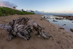 Nukolii Beach Park (devrieda) Tags: hawaii kauai kauaibeach kawailoabeach nukoliibeachpark