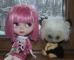16/365, Jubilee and panda