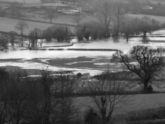 This might only be the start of things to come (adam_moralee) Tags: trees bw white black nature water landscape blackwhite flooding flood explore fields fujifilm submerged floods waterlogged whiteblack finepixs1500 adammoralee
