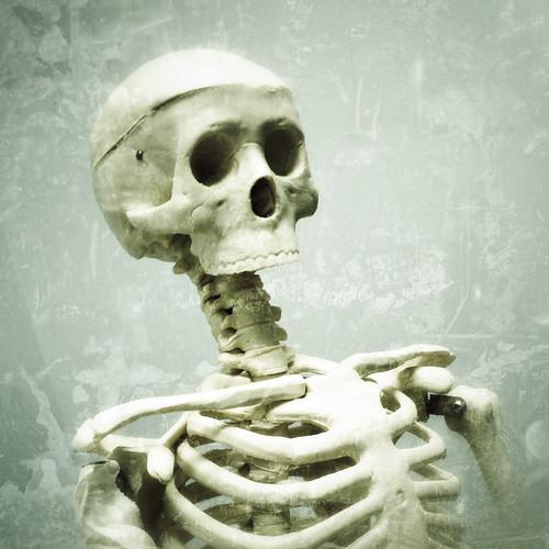 bones by woodleywonderworks, on Flickr