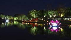 P1010762_Tainan (Mark Kao) Tags: festival taiwan lantern tainan    mygearandme mygearandmepremium mygearandmebronze mygearandmesilver mygearandmegold mygearandmeplatinum infinitexposure