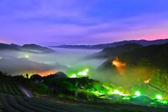 (DSC_3733) (nans0410(busy)) Tags: clouds tea taiwan   pinglin  glasslight  newtaipei