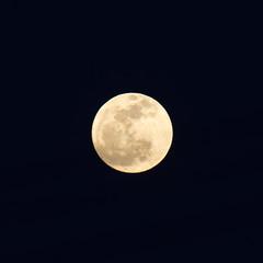 月(2014/03/16) (asat4) Tags: moon sony α7r