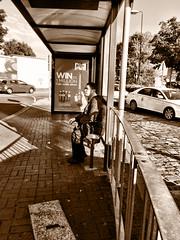Selfie Stick (Deydodoe) Tags: street people blackandwhite bw man bus male cars advertising person mono waiting streetphotography streetscene busstop busshelter commute advert wait commuting shelter stalbans iphone 2015 selfiestick