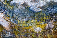 Hverarond-150701_MG_6128.jpg (Jokull) Tags: summer mountain abstract texture colors landscape photography photo iceland europe outdoor clay sulphur nordic geothermal sland mudpots northerneurope 2015 mvatn fjll fjall phototour hverarnd hverasvi ingeyjarssla palljokull landoficeandfire dianneandsteve
