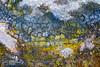 Hverarönd-150701_MG_6128.jpg (Jokull) Tags: summer mountain abstract texture colors landscape photography photo iceland europe outdoor clay sulphur nordic geothermal ísland mudpots northerneurope 2015 mývatn fjöll fjall phototour hverarönd hverasvæði þingeyjarsýsla palljokull landoficeandfire dianneandsteve