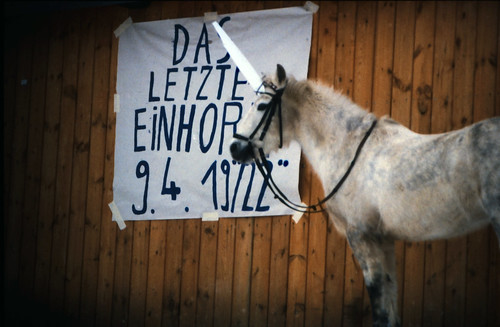 "Filmwerbe-Dia ""Das letzte Einhorn"" (08) • <a style=""font-size:0.8em;"" href=""http://www.flickr.com/photos/69570948@N04/19636270649/"" target=""_blank"">View on Flickr</a>"