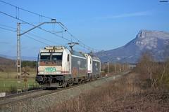 253+253 (firedmanager) Tags: renfe renfeoperadora renfemercancías railtransport locomotora tren train trena bombardiertraxx bombardier 253 navarra ferrocarril