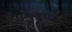 364/366: stuck in a rut (Andrea · Alonso) Tags: me selfportrait autorretrato 366 365 fog mist niebla hand anxious cage