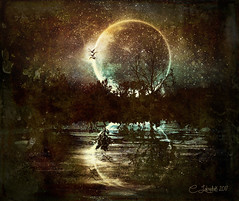 Midnight Landscape (clabudak) Tags: night silhouette moon lake trees ripples water landscape texture birds stars