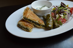 Day 69 - Greek vegetarian (sjlara) Tags: phyllo feta greeksalad dolmas vegetarian dolma spanakopita greekfood