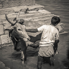 2006 India,  Badami 095.jpg (Mandir Prem) Tags: indians ancient wildlife asia backpakers india exotic travel bw outdoor temple nature places badami