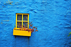 Safron and Blue (Yellabelly*) Tags: blue ireland irish window yellow wall kinsale countycork flowerbox