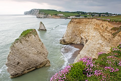 Freshwater Bay. (Andy Bracey -) Tags: seascape bay cliffs thrift isleofwight summertime stacks freshwater lateafternoon freshwaterbay bracey andybracey