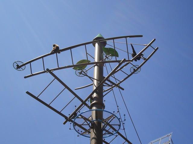 旭山動物園てながざる館の地上から10m以上はある鉄塔|旭川市旭山動物園