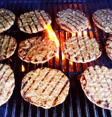 "Burger Catering - Sommerfest in den Rheinauen in Bonn • <a style=""font-size:0.8em;"" href=""http://www.flickr.com/photos/69233503@N08/9370496464/"" target=""_blank"">View on Flickr</a>"