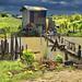 Casetta in legno fuori Belize City in direzione Orange Walk