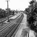 Deutschland - Schienen - rails - 101_PANA- Panasonic TZ10